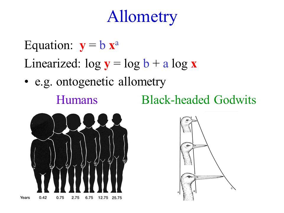 Allometry Equation: y = b x a Linearized: log y = log b + a log x e.g. ontogenetic allometry HumansBlack-headed Godwits