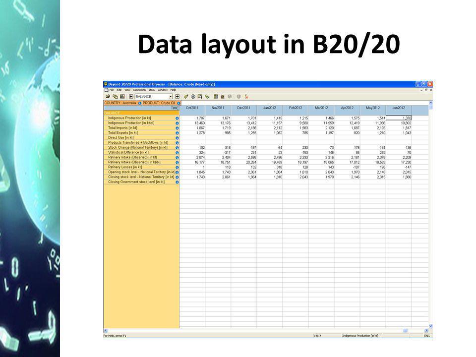 Data layout in B20/20