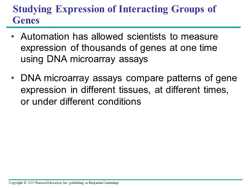 Copyright © 2005 Pearson Education, Inc. publishing as Benjamin Cummings Studying Expression of Interacting Groups of Genes Automation has allowed sci