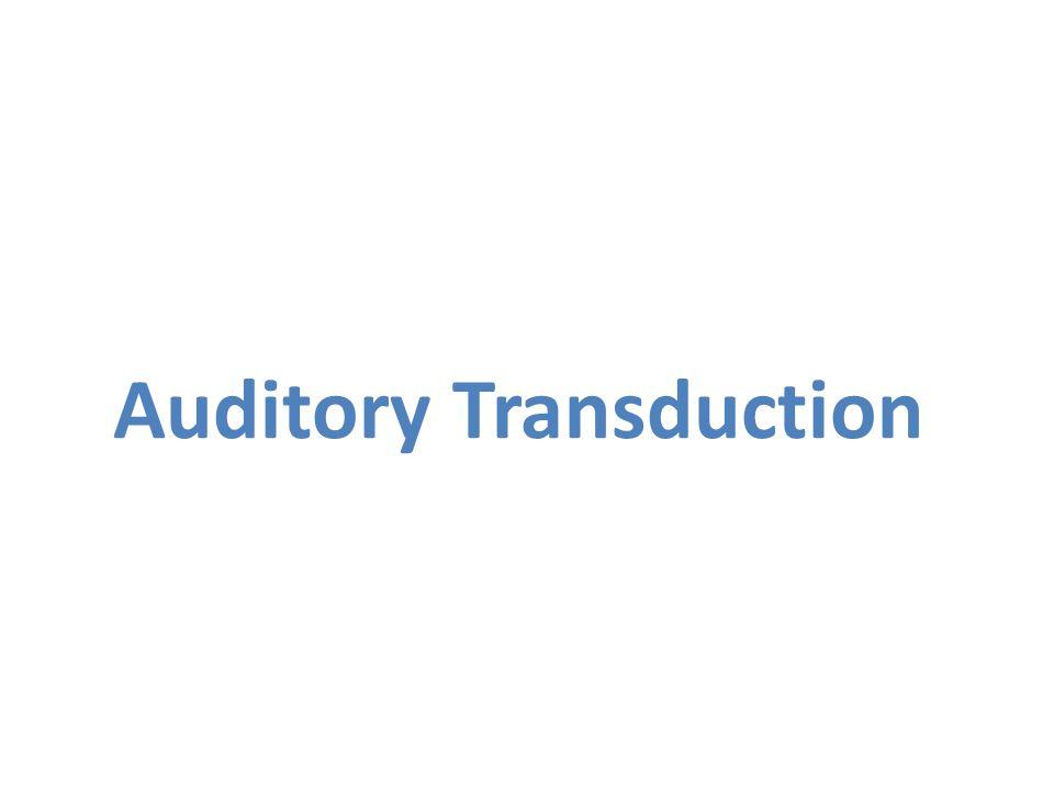 Auditory Transduction