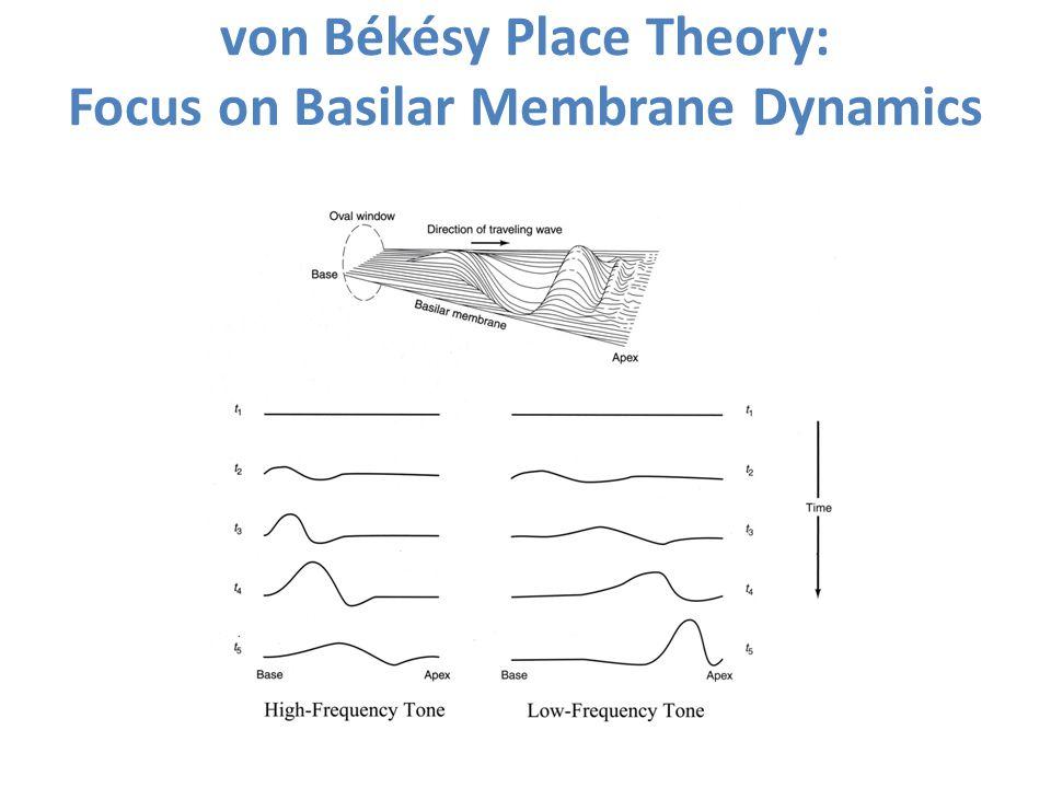 von Békésy Place Theory: Focus on Basilar Membrane Dynamics