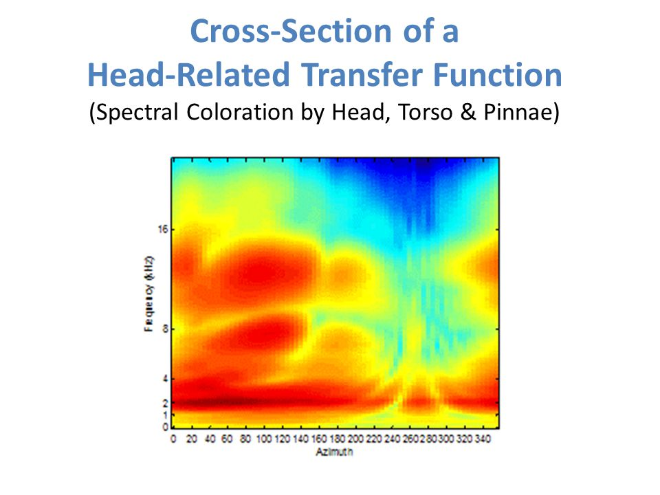 Cross-Section of a Head-Related Transfer Function (Spectral Coloration by Head, Torso & Pinnae)