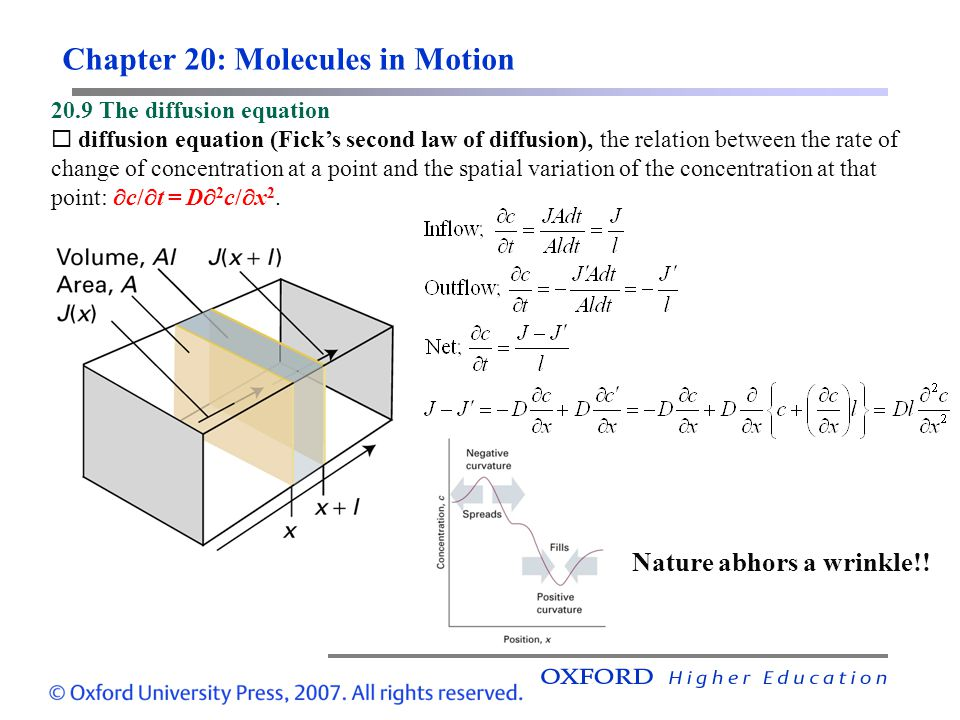 Chapter 20: Molecules in Motion 20.9 The diffusion equation  diffusion equation (Fick's second law of diffusion), the relation between the rate of change of concentration at a point and the spatial variation of the concentration at that point:  c/  t = D  2 c/  x 2.