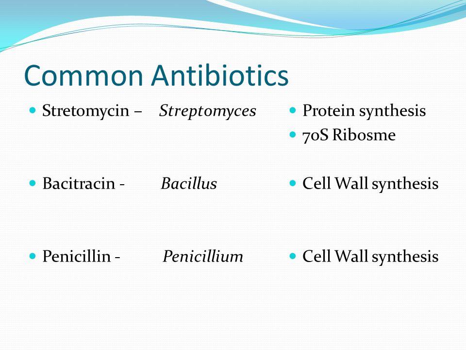 Common Antibiotics Stretomycin – Streptomyces Bacitracin - Bacillus Penicillin - Penicillium Protein synthesis 70S Ribosme Cell Wall synthesis