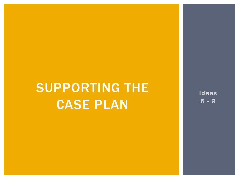 Ideas 5 - 9 SUPPORTING THE CASE PLAN