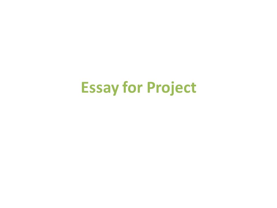 Essay for Project