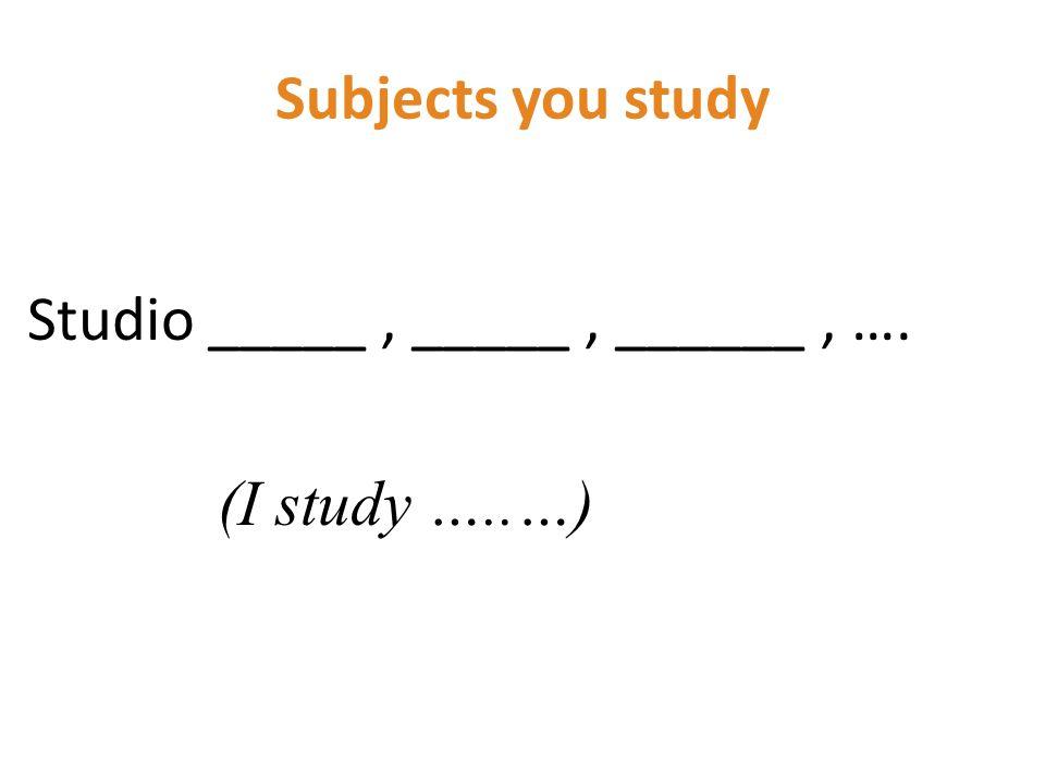 Subjects you study Studio _____, _____, ______, …. (I study …..…)