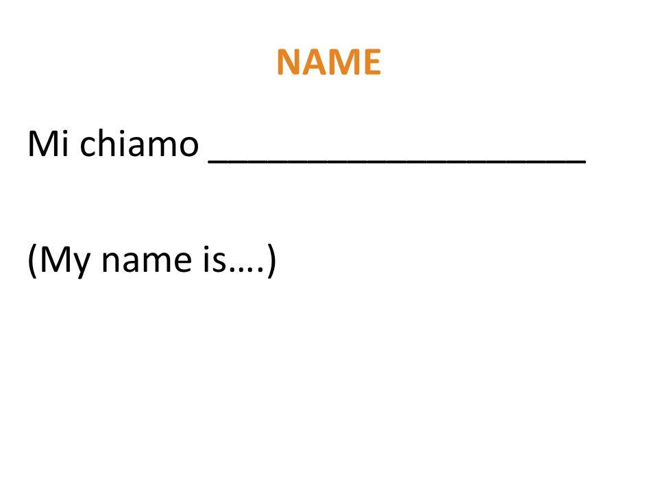 NAME Mi chiamo ___________________ (My name is….)