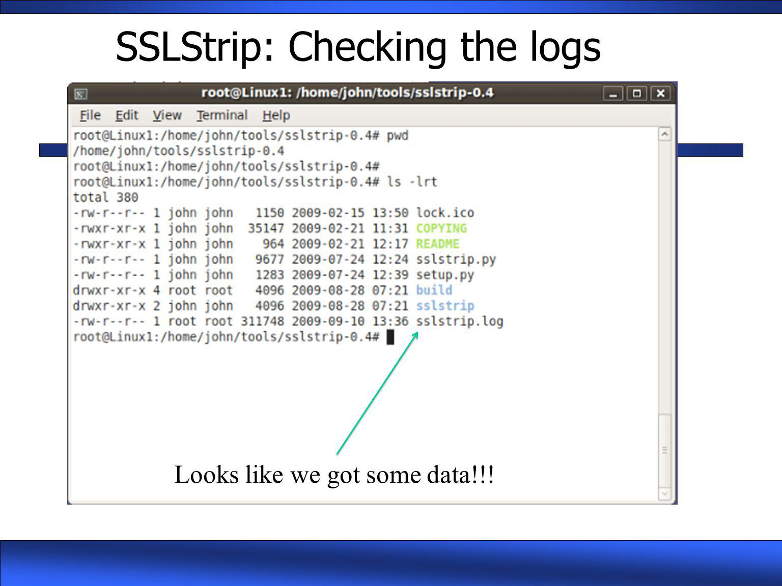 SSLStrip: Checking the logs Looks like we got some data!!!