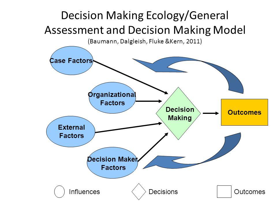 External Factors Decision Maker Factors Organizational Factors Decision Making Outcomes InfluencesDecisionsOutcomes Case Factors Decision Making Ecolo