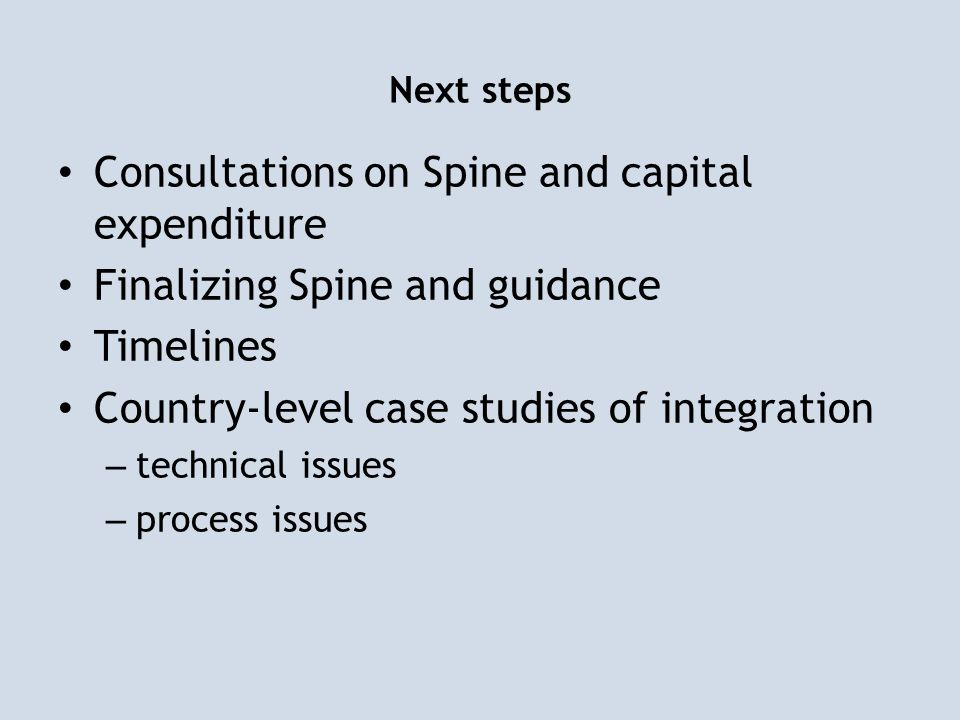 Next steps Consultations on Spine and capital expenditure Finalizing Spine and guidance Timelines Country-level case studies of integration – technica