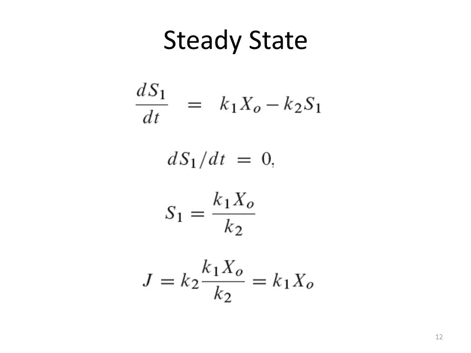 12 Steady State