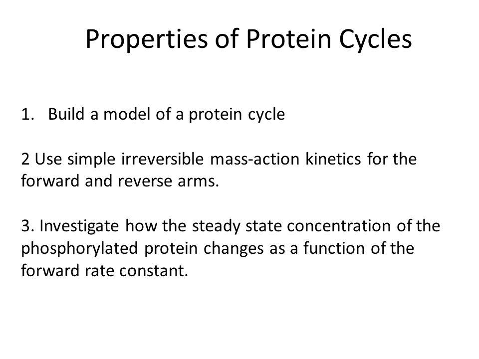 Properties of Protein Cycles 1.Build a model of a protein cycle 2 Use simple irreversible mass-action kinetics for the forward and reverse arms. 3. In