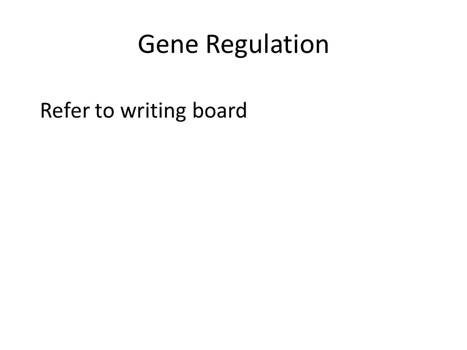 Gene Regulation Refer to writing board