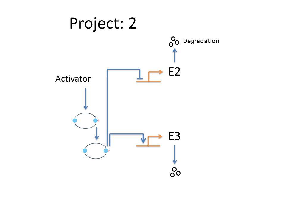 Project: 2 E2 E3 Activator Degradation