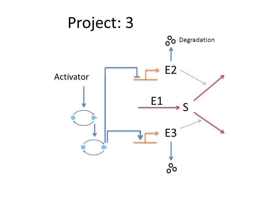 Project: 3 S E2 E3 E1 Activator Degradation