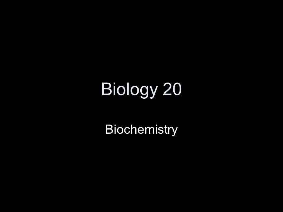 Biology 20 Biochemistry