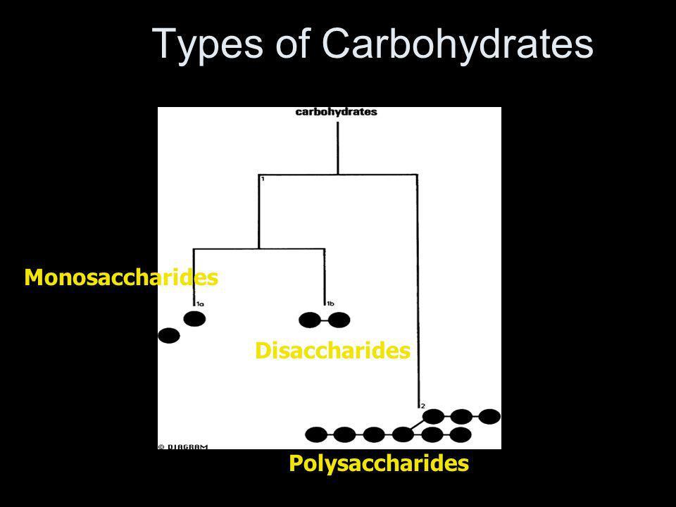 Types of Carbohydrates Monosaccharides Disaccharides Polysaccharides