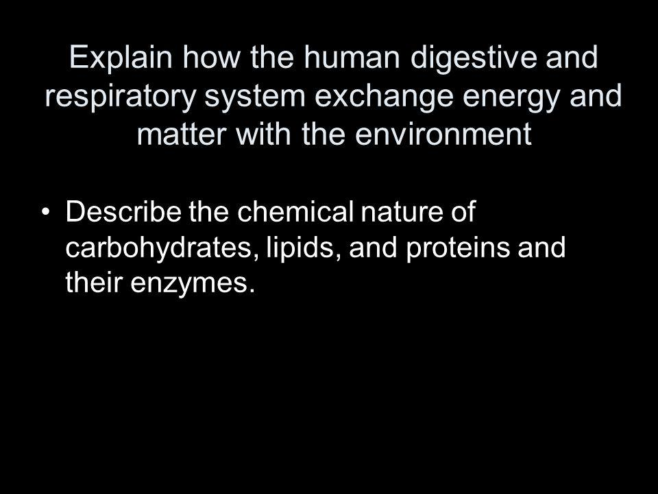 Explain how the human digestive and respiratory system exchange energy and matter with the environment Describe the chemical nature of carbohydrates,