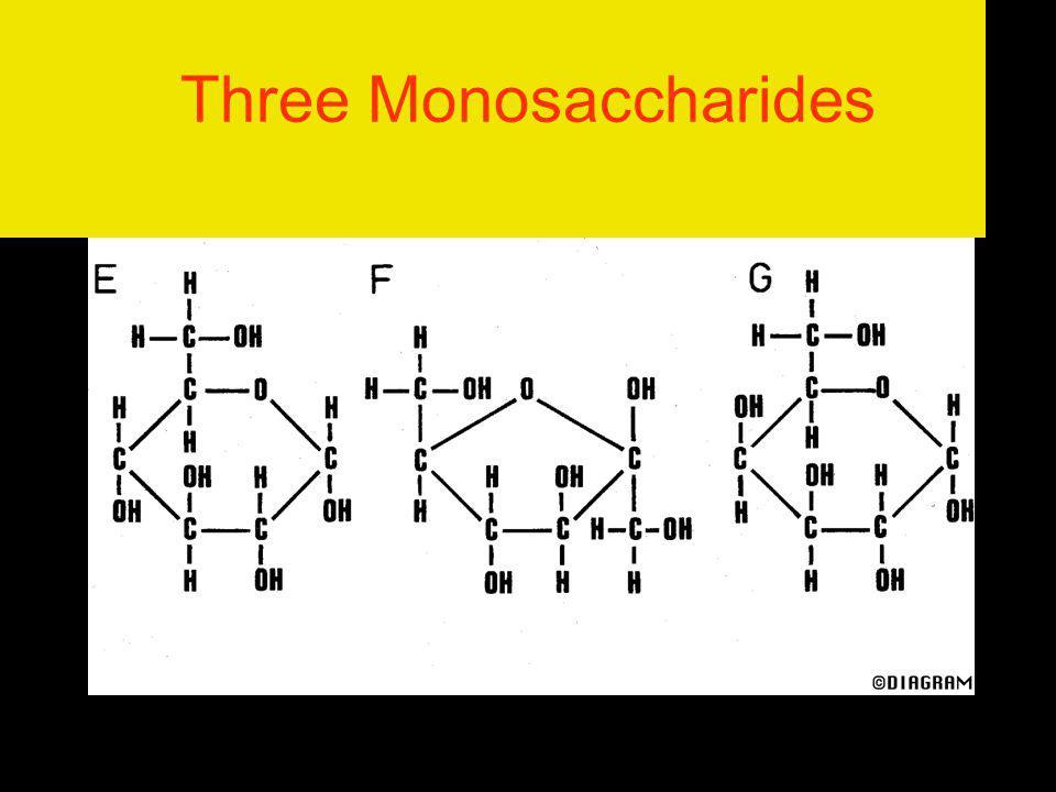 Three Monosaccharides
