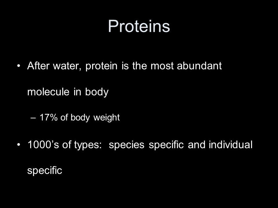 After water, protein is the most abundant molecule in body –17% of body weight 1000's of types: species specific and individual specific