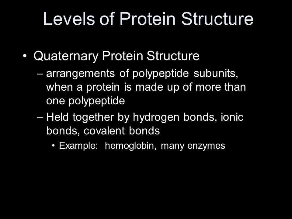 Levels of Protein Structure Quaternary Protein Structure –arrangements of polypeptide subunits, when a protein is made up of more than one polypeptide