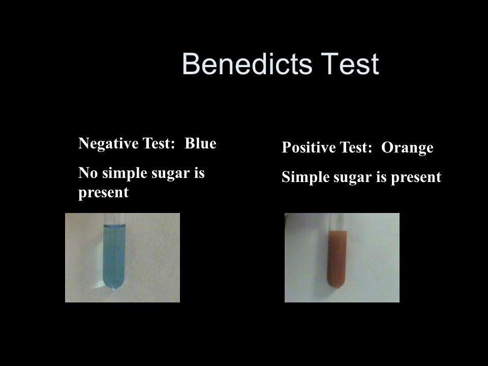 Benedicts Test Negative Test: Blue No simple sugar is present Positive Test: Orange Simple sugar is present