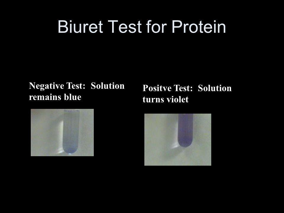 Biuret Test for Protein Negative Test: Solution remains blue Positve Test: Solution turns violet