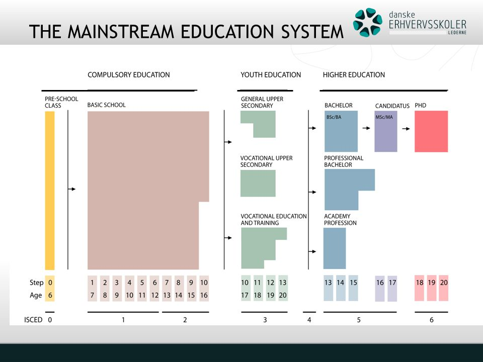 THE MAINSTREAM EDUCATION SYSTEM