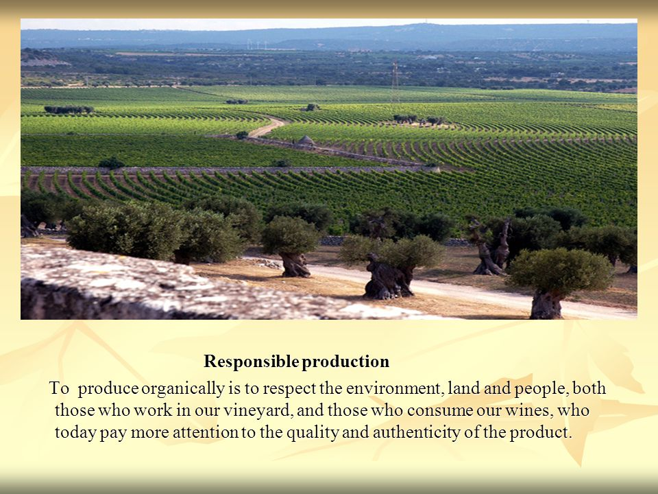 Responsible production Responsible production To produce organically is to respect the environment, land and people, both those who work in our vineya