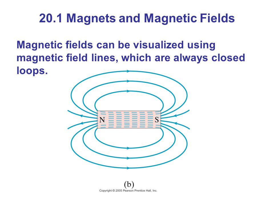 20.1 Magnets and Magnetic Fields Magnetic fields can be visualized using magnetic field lines, which are always closed loops.