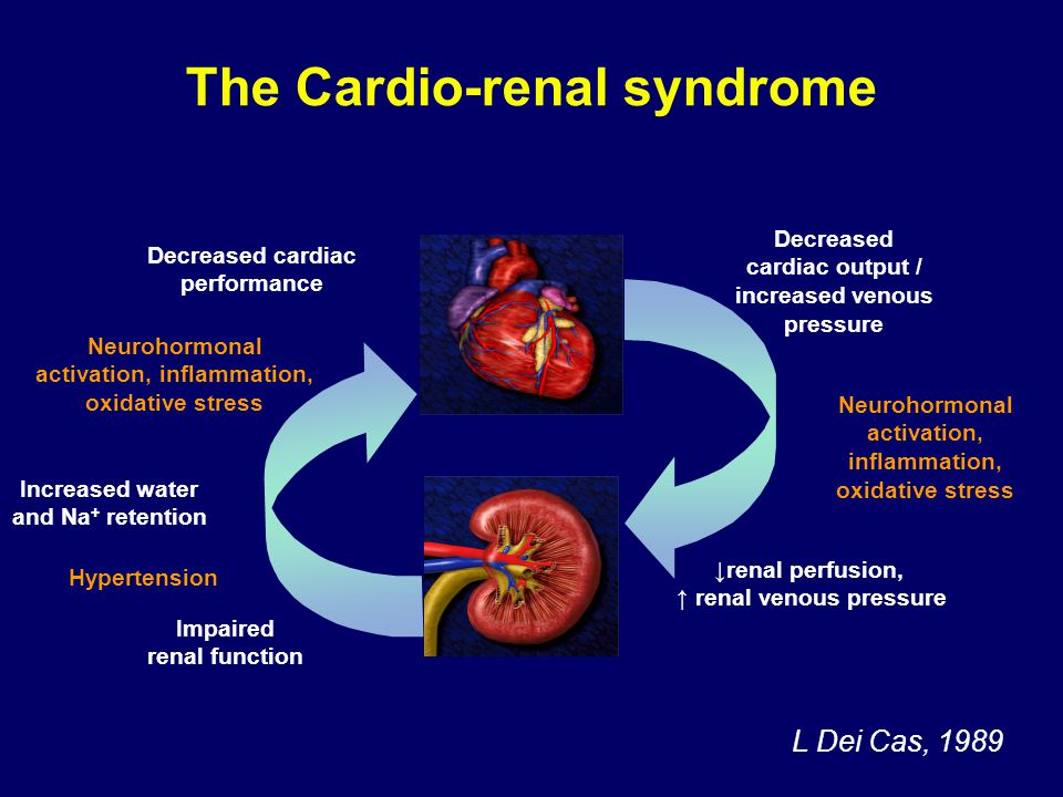 Cardio-renal syndrome: a definition Presence or development of renal dysfunction in patients with cardiac dysfunction –Chronic heart failure –Acute heart failure Patients are volume overloaded and/or with low cardiac output (dehydration must be excluded)