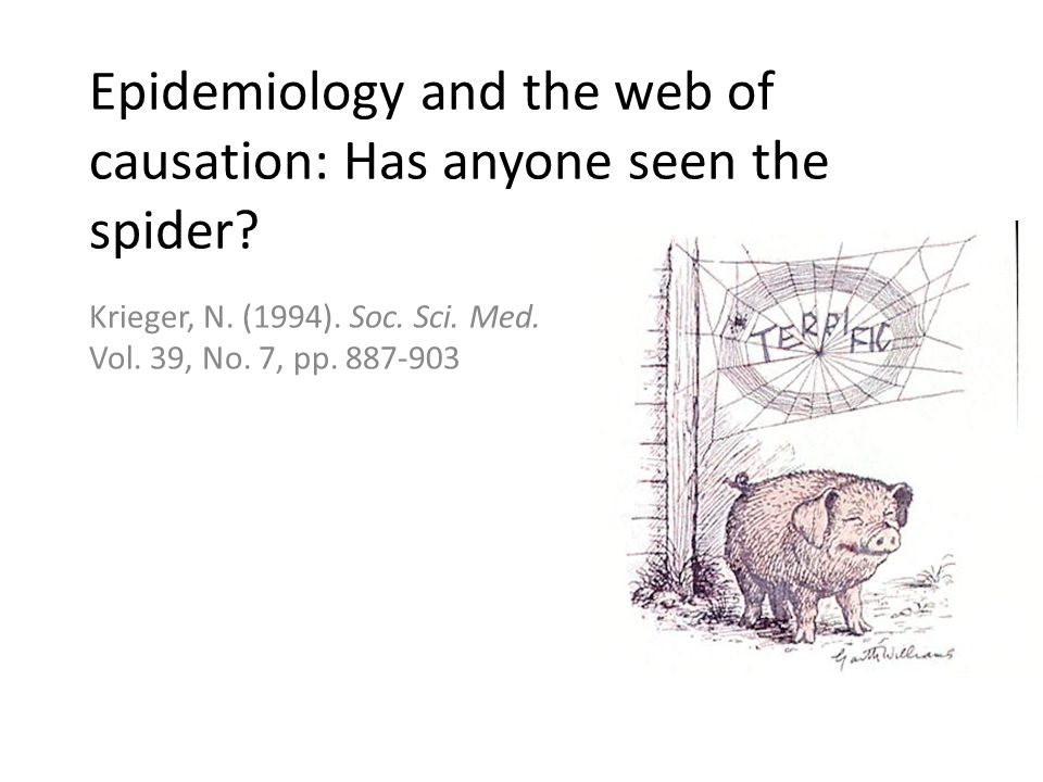 Epidemiology and the web of causation: Has anyone seen the spider.