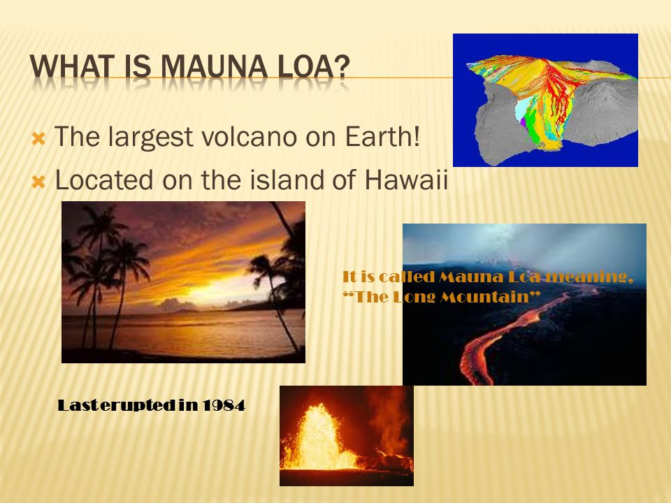 """ The largest volcano on Earth!  Located on the island of Hawaii It is called Mauna Loa meaning, """"The Long Mountain"""" Last erupted in 1984"""
