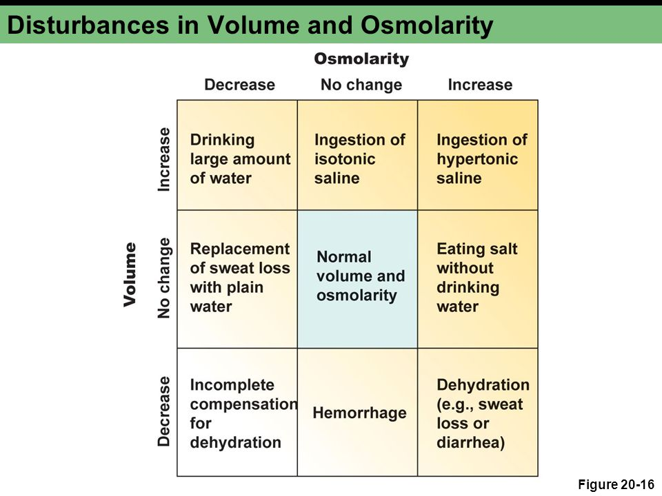 Disturbances in Volume and Osmolarity Figure 20-16