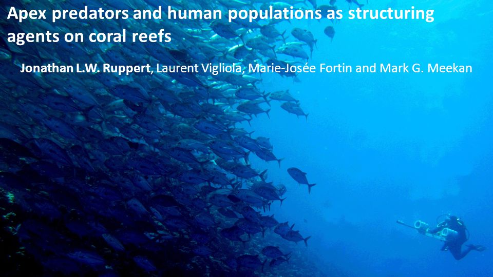 Apex predators and human populations as structuring agents on coral reefs Jonathan L.W. Ruppert, Laurent Vigliola, Marie-Josée Fortin and Mark G. Meek