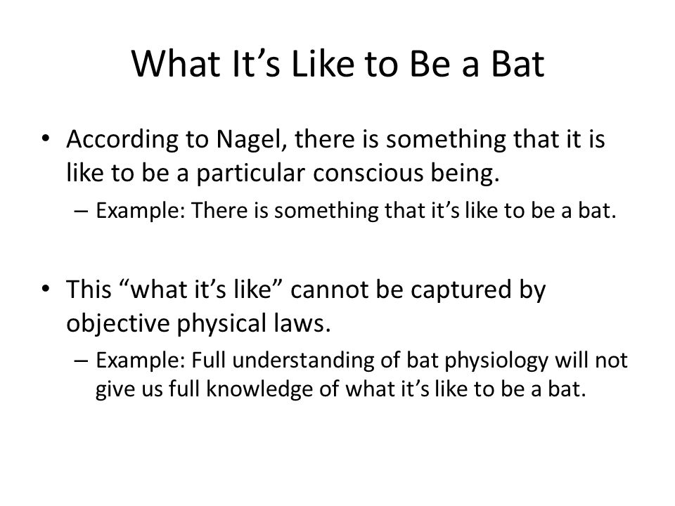 What It's Like to Be a Bat According to Nagel, there is something that it is like to be a particular conscious being.