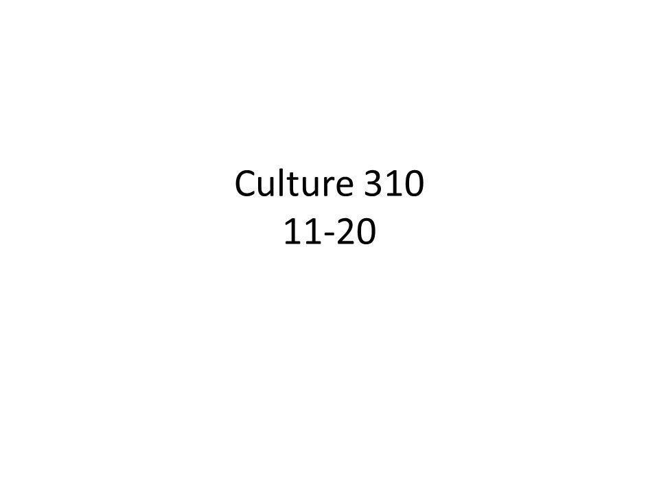 Culture 310 11-20