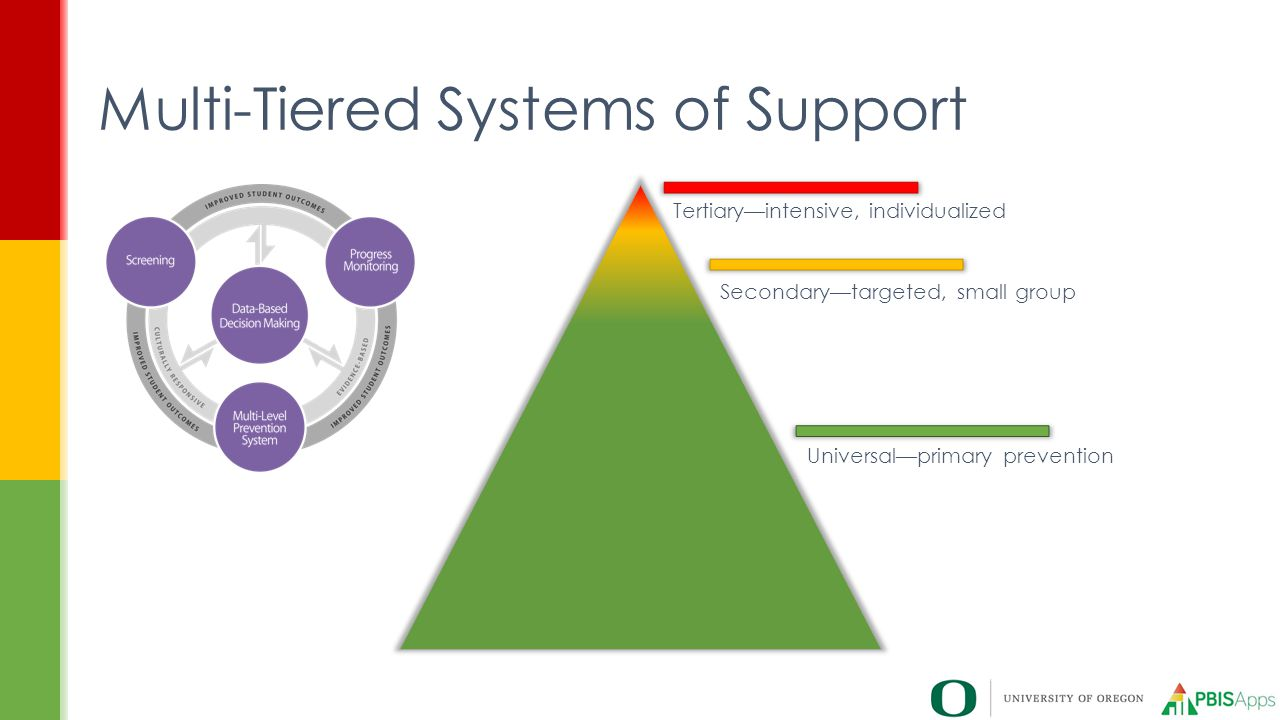 Multi-Tiered Systems of Support Tertiary—intensive, individualized Secondary—targeted, small group Universal—primary prevention