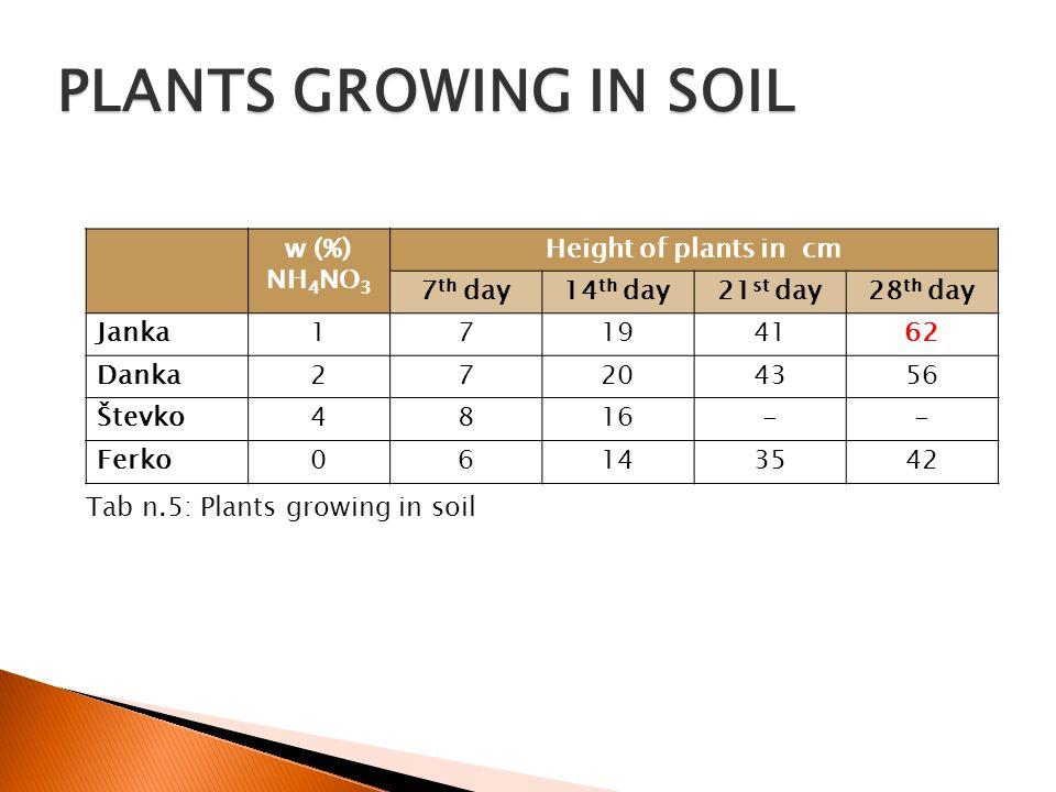 w (%) NH 4 NO 3 Height of plants in cm 7 th day14 th day21 st day28 th day Janka17194162 Danka27204356 Števko4816-- Ferko06143542 Tab n.5: Plants growing in soil PLANTS GROWING IN SOIL