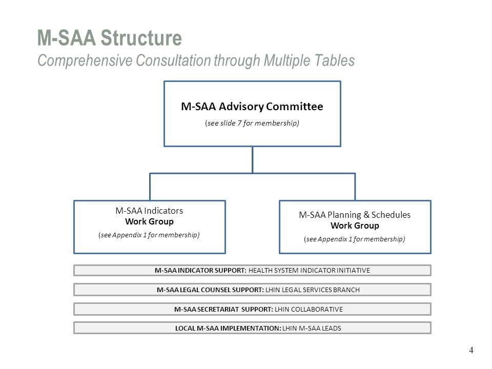 LHIN/HSP Accountability Relationship How do the various CAPS/M-SAA components fit together.