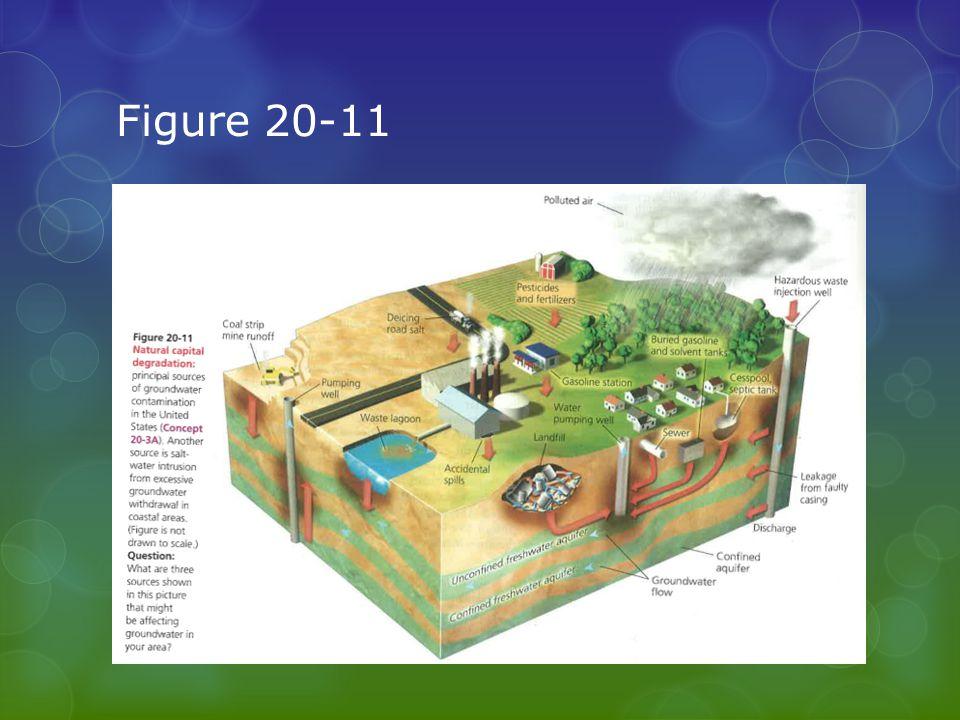 Figure 20-11