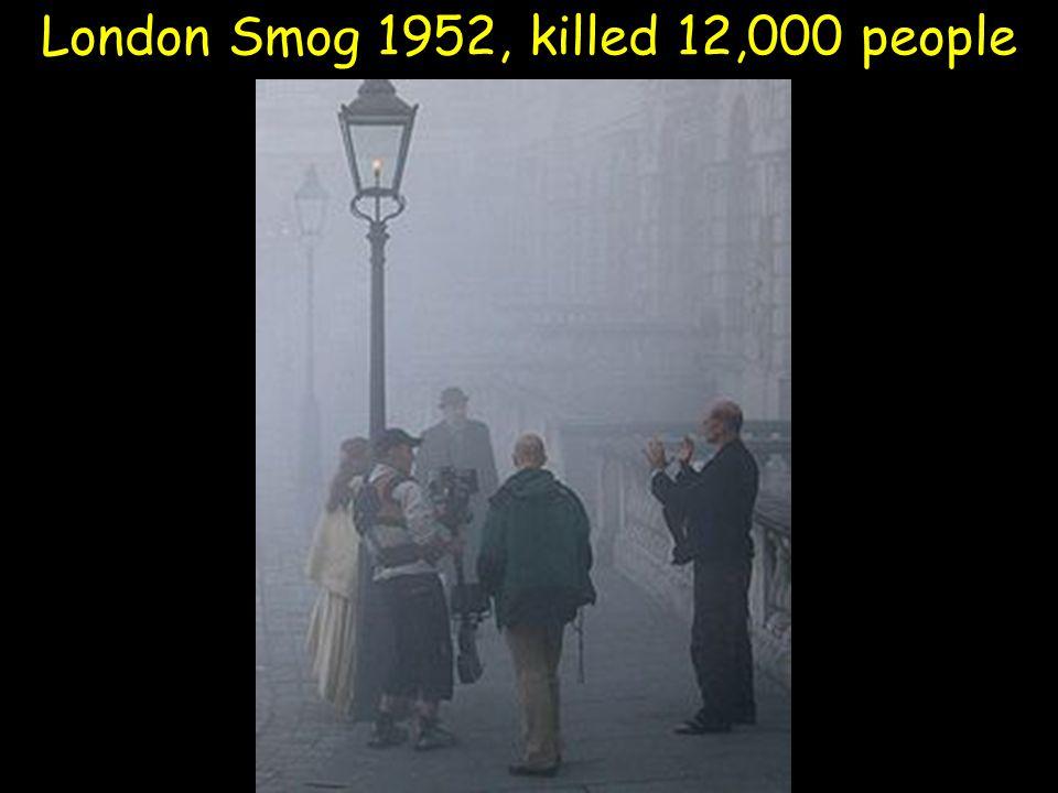 London Smog 1952, killed 12,000 people