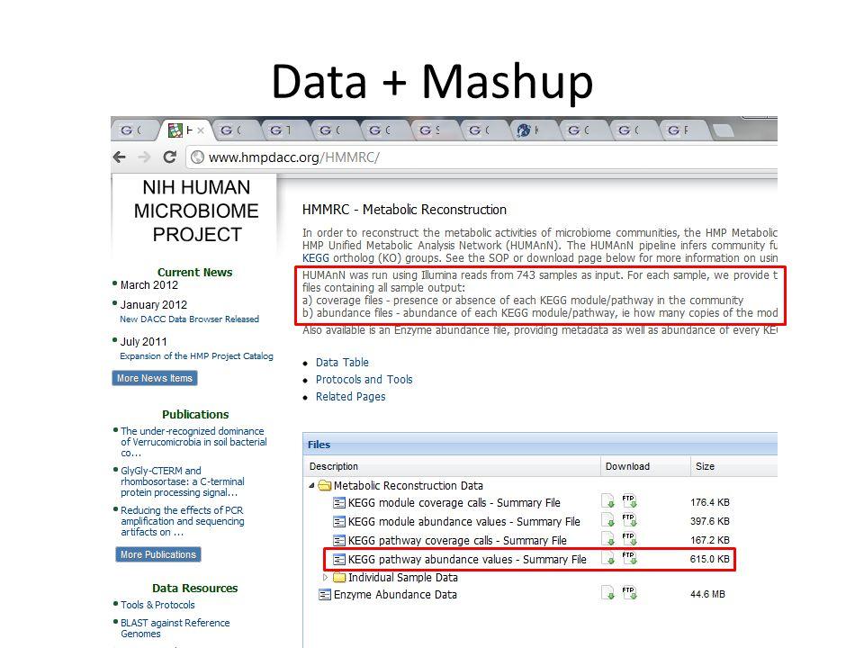Data + Mashup