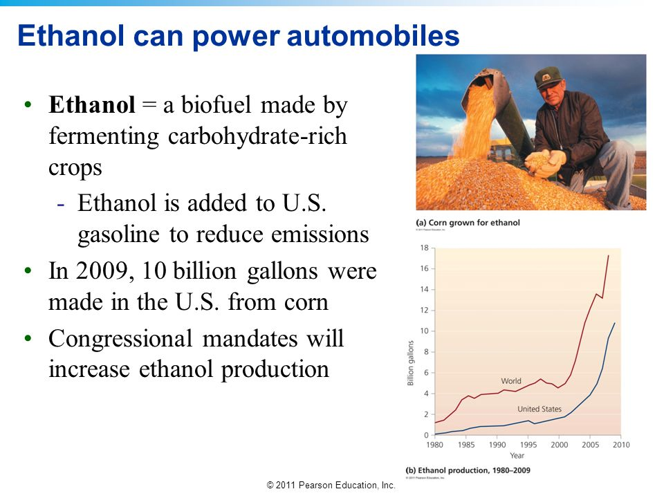 © 2011 Pearson Education, Inc. Ethanol can power automobiles Ethanol = a biofuel made by fermenting carbohydrate-rich crops -Ethanol is added to U.S.
