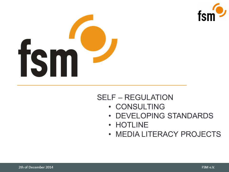 SELF – REGULATION CONSULTING DEVELOPING STANDARDS HOTLINE MEDIA LITERACY PROJECTS