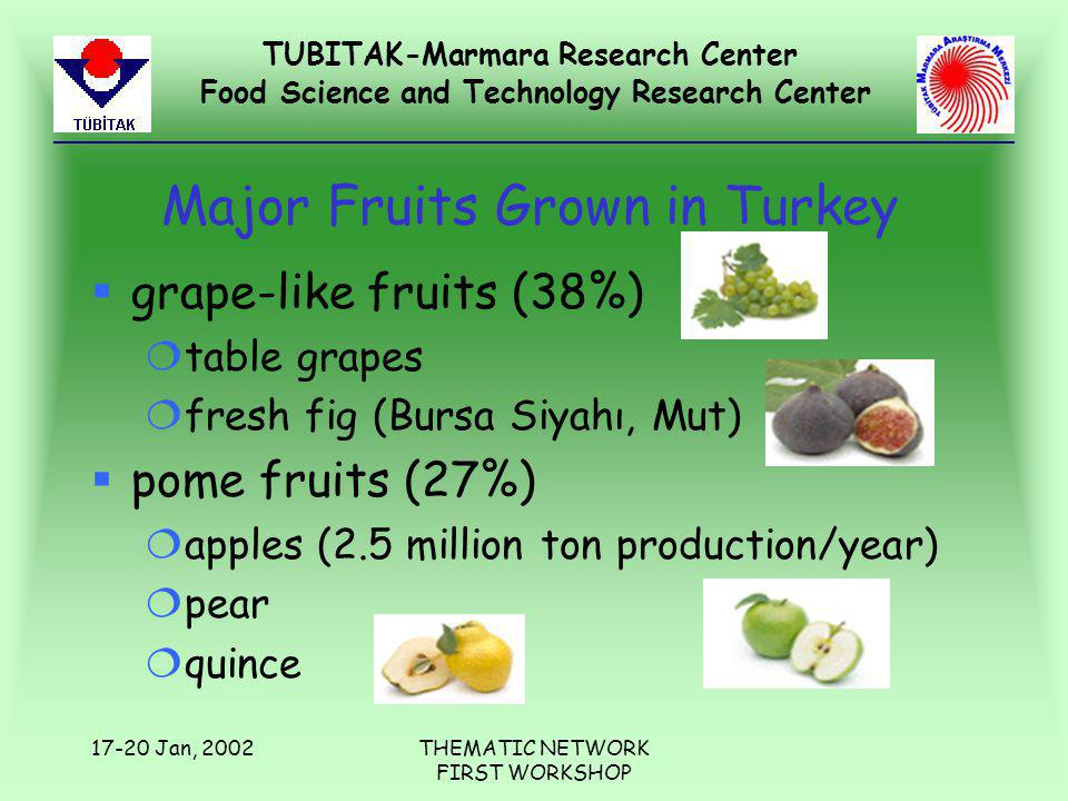 TUBITAK-Marmara Research Center Food Science and Technology Research Center 17-20 Jan, 2002THEMATIC NETWORK FIRST WORKSHOP Major Fruits Grown in Turkey §grape-like fruits (38%) ¦table grapes ¦fresh fig (Bursa Siyahı, Mut) §pome fruits (27%) ¦apples (2.5 million ton production/year) ¦pear ¦quince