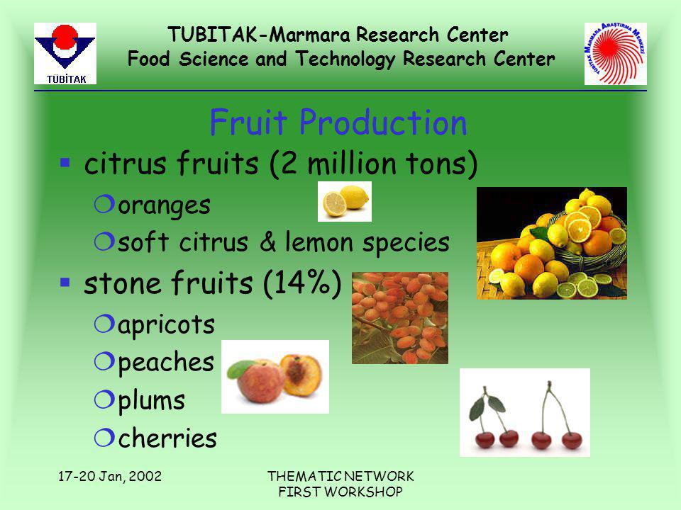 TUBITAK-Marmara Research Center Food Science and Technology Research Center 17-20 Jan, 2002THEMATIC NETWORK FIRST WORKSHOP Fruit Production §citrus fruits (2 million tons) ¦oranges ¦soft citrus & lemon species §stone fruits (14%) ¦apricots ¦peaches ¦plums ¦cherries