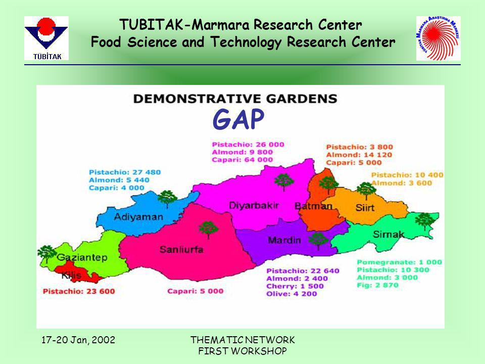 TUBITAK-Marmara Research Center Food Science and Technology Research Center 17-20 Jan, 2002THEMATIC NETWORK FIRST WORKSHOP GAP