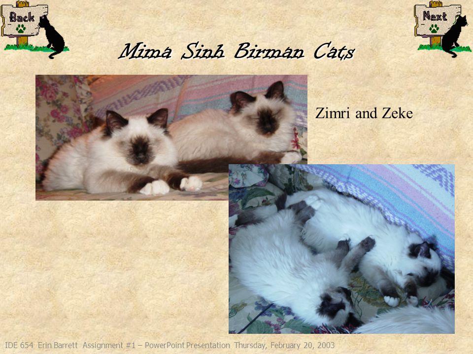 IDE 654 Erin Barrett Assignment #1 – PowerPoint Presentation Thursday, February 20, 2003 Mima Sinh Birman Cats Zimri and Zeke